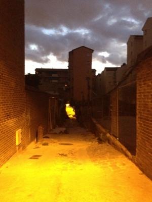 Vista del Pasjae de Cavanilles desde su entrada, Madrid