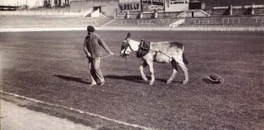 Estadio Chamartín, 1925, Madrid