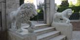 Leones Monforte Valencia