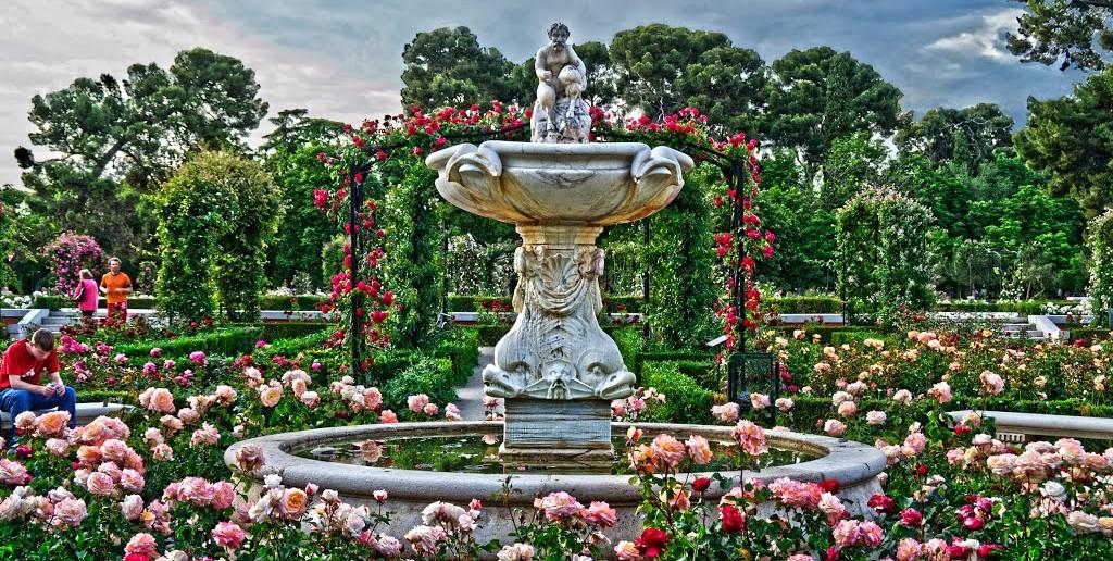 Primavera en Madrid, Rosaleda del Parque del Retiro