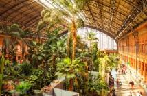 Jadrín tropical de la Estación de Atocha
