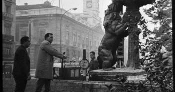 Oso y el Madroño, Madrid