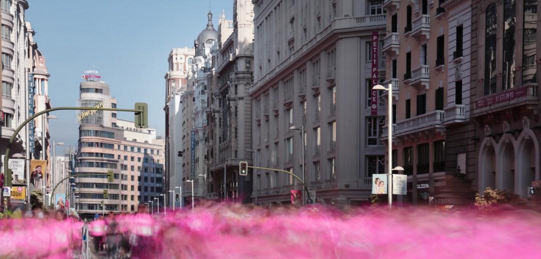 Marea Rosa en Madrid., de Javier Aranburu